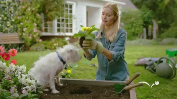 PetSmart Spring Savings Sale TV Spot, 'Dig the Savings' - Thumbnail 3