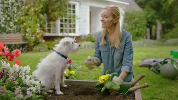 PetSmart Spring Savings Sale TV Spot, 'Dig the Savings' - Thumbnail 4