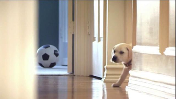 Purina Puppy Chow TV Spot, 'Who Can Resist?' - Thumbnail 1
