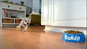 Purina Puppy Chow TV Spot, 'Who Can Resist?' - Thumbnail 5