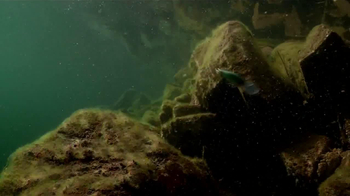 Sufix TV Spot, 'Give Fish More Lip' - Thumbnail 3