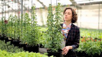 Similasan TV Spot, 'Greenhouse' - 280 commercial airings