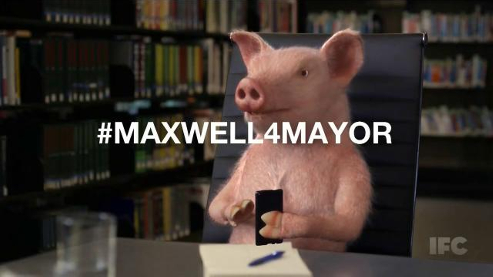 GEICO TV Commercial, 'Maxwell for Mayor'
