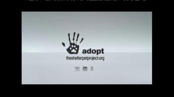 The Shelter Pet Project TV Spot, 'Meet Maui, Amazing Shelter Pet!' - Thumbnail 10
