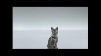 The Shelter Pet Project TV Spot, 'Meet Maui, Amazing Shelter Pet!' - Thumbnail 2