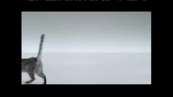 The Shelter Pet Project TV Spot, 'Meet Maui, Amazing Shelter Pet!' - Thumbnail 6