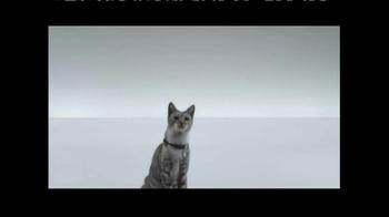 The Shelter Pet Project TV Spot, 'Meet Maui, Amazing Shelter Pet!' - Thumbnail 8
