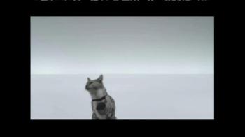 The Shelter Pet Project TV Spot, 'Meet Maui, Amazing Shelter Pet!' - Thumbnail 9