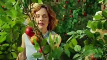 Stella Artois Cidre TV Spot, 'Orchard' - Thumbnail 5