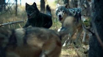 Blue Buffalo Wilderness TV Spot, 'Wolf' - Thumbnail 1