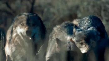 Blue Buffalo Wilderness TV Spot, 'Wolf' - Thumbnail 3