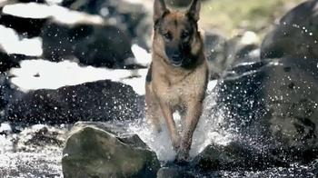 Blue Buffalo Wilderness TV Spot, 'Wolf' - Thumbnail 6