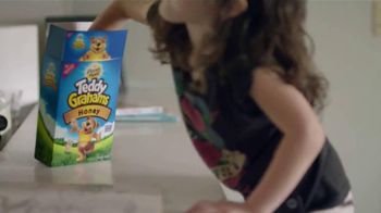 Honey Maid TV Spot, 'This is Wholesome' - 4364 commercial airings