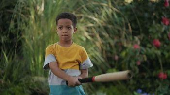 Lowe's TV Spot, 'Baseball' - 1288 commercial airings