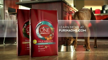 Purina One True Instinct TV Spot, 'Real Salmon' - Thumbnail 8