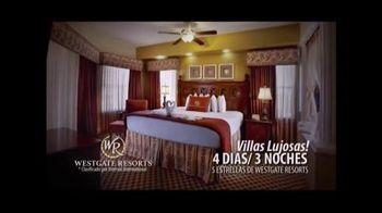 Norwegian Cruise Lines TV Spot, 'Su boleto al paraíso' [Spanish]