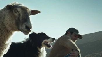 Ram 1500 TV Spot, 'The Pack' - Thumbnail 4