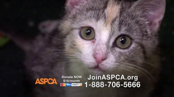 ASPCA TV Spot, 'No One' - Thumbnail 4