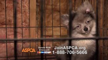 ASPCA TV Spot, 'No One' - Thumbnail 5