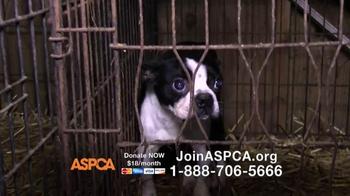 ASPCA TV Spot, 'No One' - Thumbnail 6