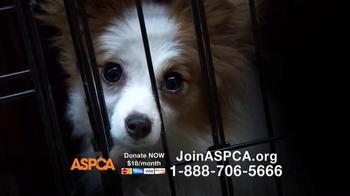 ASPCA TV Spot, 'No One' - Thumbnail 8