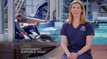 SeaWorld TV Spot, 'Facts about SeaWorld's Killer Whales' - Thumbnail 1