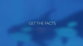 SeaWorld TV Spot, 'Facts about SeaWorld's Killer Whales' - Thumbnail 10