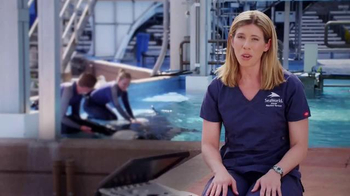 SeaWorld TV Spot, 'Facts about SeaWorld's Killer Whales' - Thumbnail 3