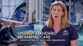 SeaWorld TV Spot, 'Facts about SeaWorld's Killer Whales' - Thumbnail 4