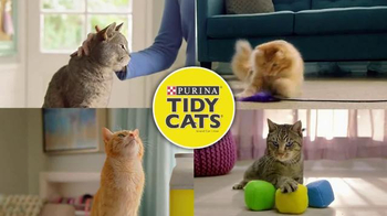 Purina Tidy Cats TV Spot, \'Every Home, Every Cat\'