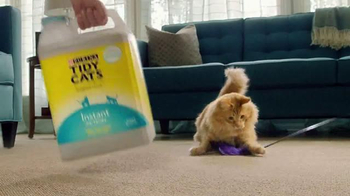 Purina Tidy Cats TV Spot, 'Every Home, Every Cat' - Thumbnail 5