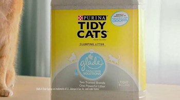 Purina Tidy Cats TV Spot, 'Every Home, Every Cat' - Thumbnail 6