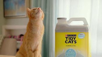 Purina Tidy Cats TV Spot, 'Every Home, Every Cat' - Thumbnail 7
