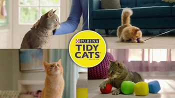 Purina Tidy Cats TV Spot, 'Every Home, Every Cat' - Thumbnail 9