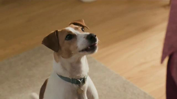 Purina Beneful Chopped Blends TV Spot, \'Yes, I Want to Eat!\'