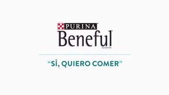 Purina Beneful TV Spot, 'Sí, Quiero Comer' [Spanish] - Thumbnail 1