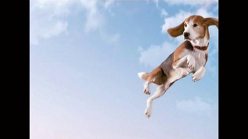 Frontline Plus for Dogs TV Spot, 'Flea Fighter'