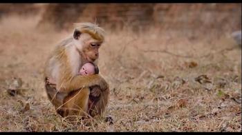 Monkey Kingdom - Alternate Trailer 8