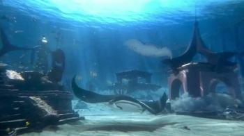 Atlantis TV Spot, '$250 Airfare Credit and Dolphin Interaction' - Thumbnail 1