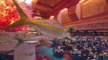 Atlantis TV Spot, '$250 Airfare Credit and Dolphin Interaction' - Thumbnail 8