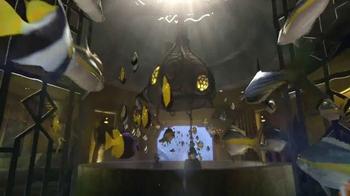 Atlantis TV Spot, '$250 Airfare Credit and Dolphin Interaction' - Thumbnail 9