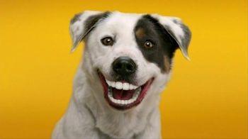 Pedigree Dentastix TV Spot, 'Give Your Dog a Bright Smile'