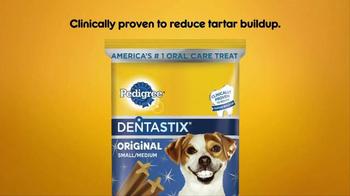 Pedigree Dentastix TV Spot, 'Give Your Dog a Bright Smile' - Thumbnail 10