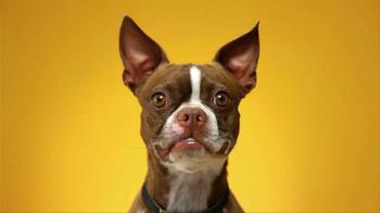 Pedigree Dentastix TV Spot, 'Give Your Dog a Bright Smile' - Thumbnail 5