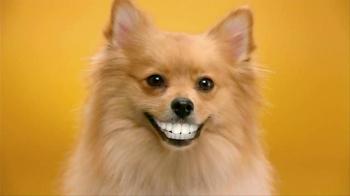 Pedigree Dentastix TV Spot, 'Give Your Dog a Bright Smile' - Thumbnail 6