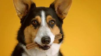 Pedigree Dentastix TV Spot, 'Give Your Dog a Bright Smile' - Thumbnail 7