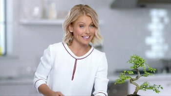 Colgate Total Gum Health Mouthwash TV Spot, 'Soil Foundation' Ft Kelly Ripa - 1987 commercial airings