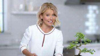 Colgate Total Gum Health Mouthwash TV Spot, 'Soil Foundation' Ft Kelly Ripa - 1987 commercial airings