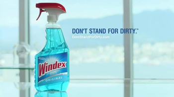Windex TV Spot, 'An Official Message From Windex' - Thumbnail 9