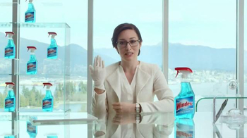 Windex TV Spot, 'An Official Message From Windex' - Thumbnail 8